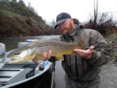 Brian Clemens- Nor Cal Fly Guides # 530-354-3740 www.norcalflyguides.com