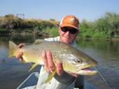 Walker Parrott- Davidson River Outfitters Pisgah Forest, NC 28768 # 888-861-0111